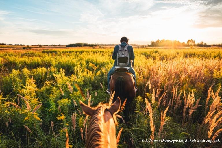 Jeździec o zachodzie słońca