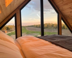 Widok z okna domku na pastwiska