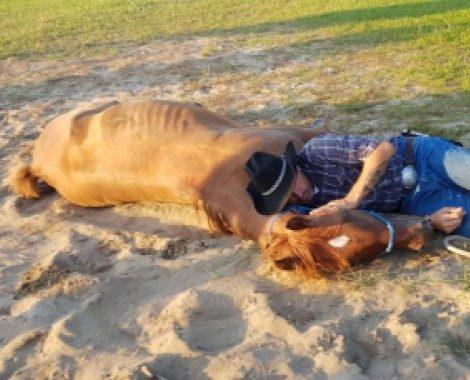 Mężczyzna leżący razem z koniem na ziemi